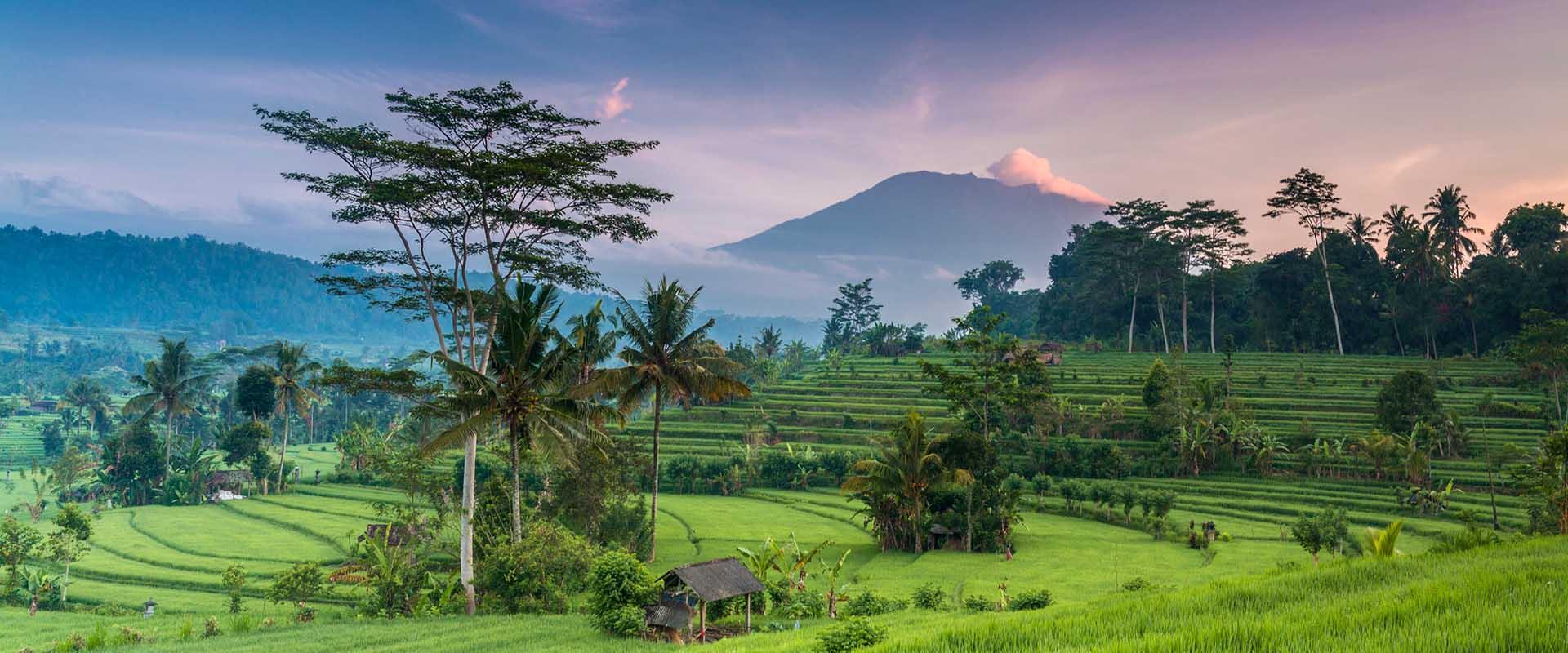 IndonesiaPublicHolidaysPublicholidaysCoId